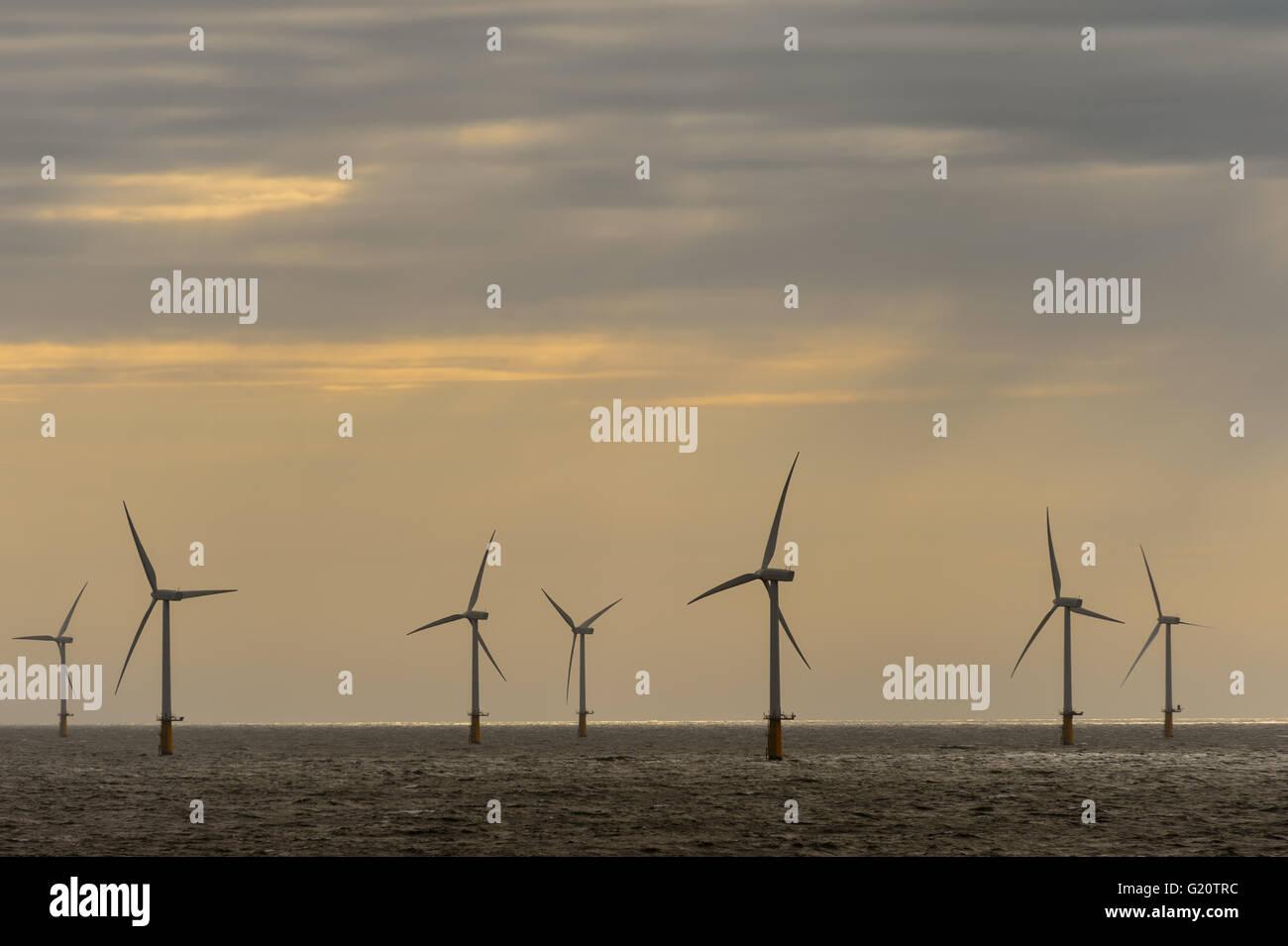 Off-shore wind mill park in the North Sea near IJmuiden, Netherlands - Stock Image