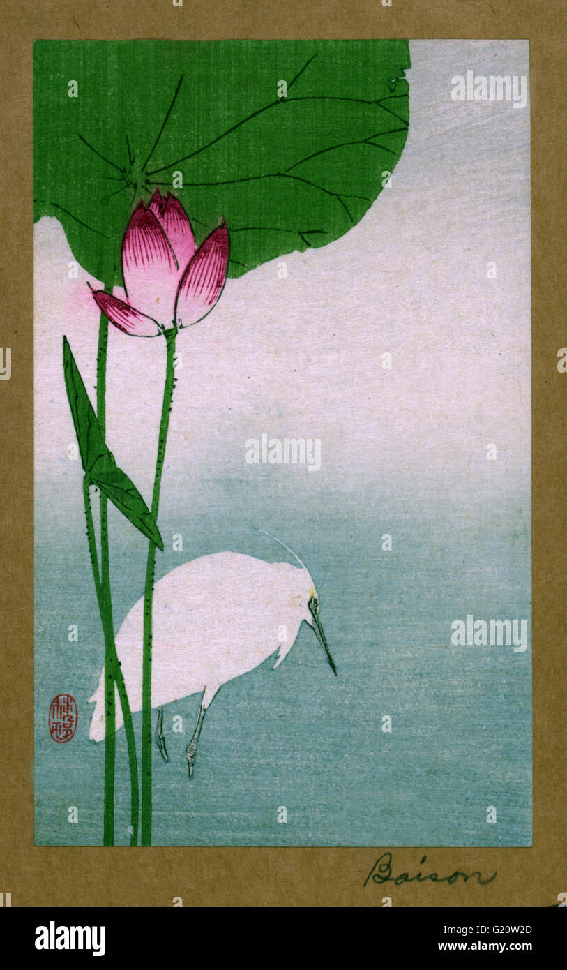 Hasu ni shirasagi translates to White heron and lotus. Japanese Woodcut print by the artist Baison, fl. dates - Stock Image