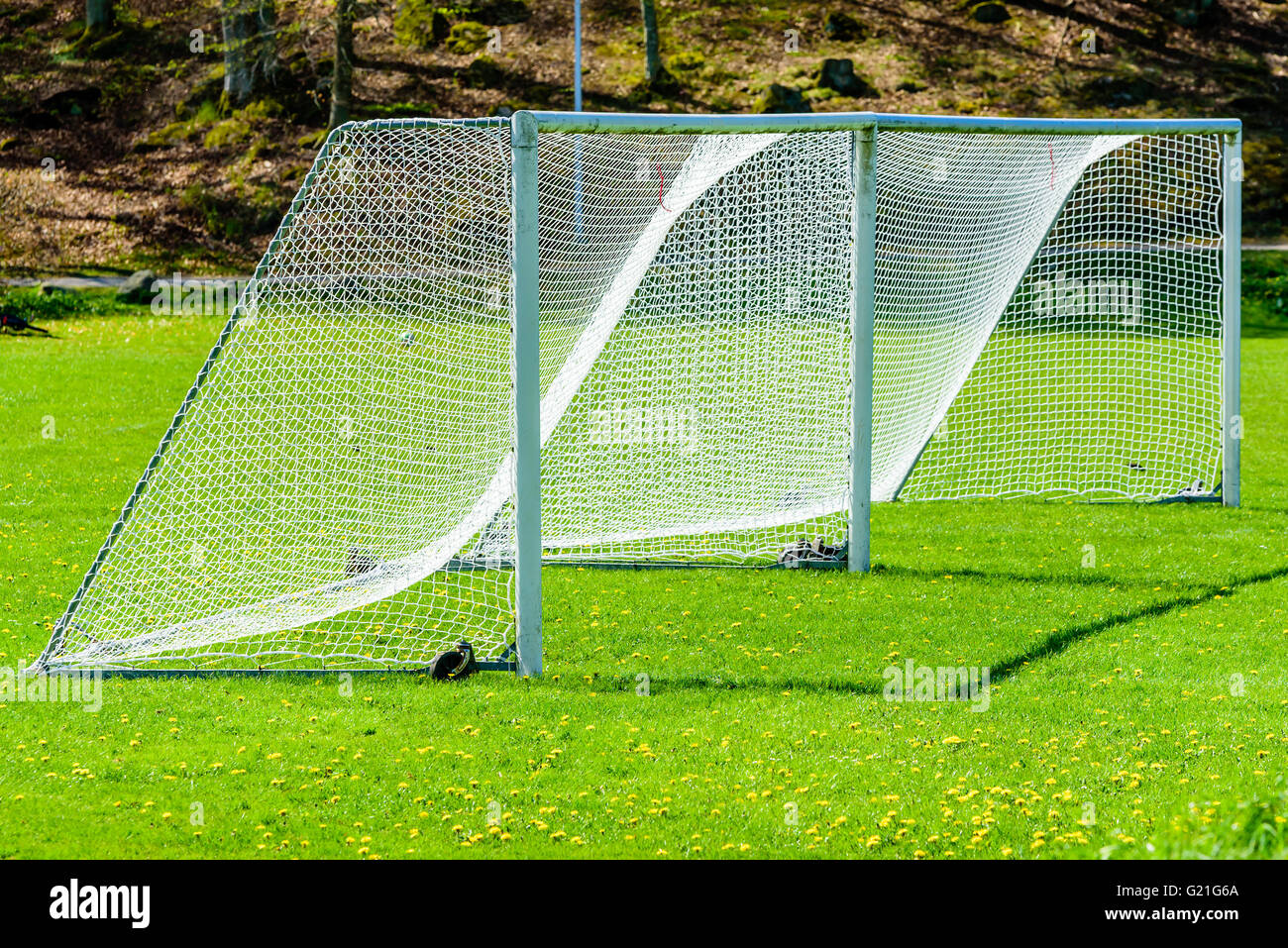 grass soccer field with goal.  Goal Two Soccer Goals Side By On A Green Grass Field Forest In Background Intended Grass Soccer Field With Goal