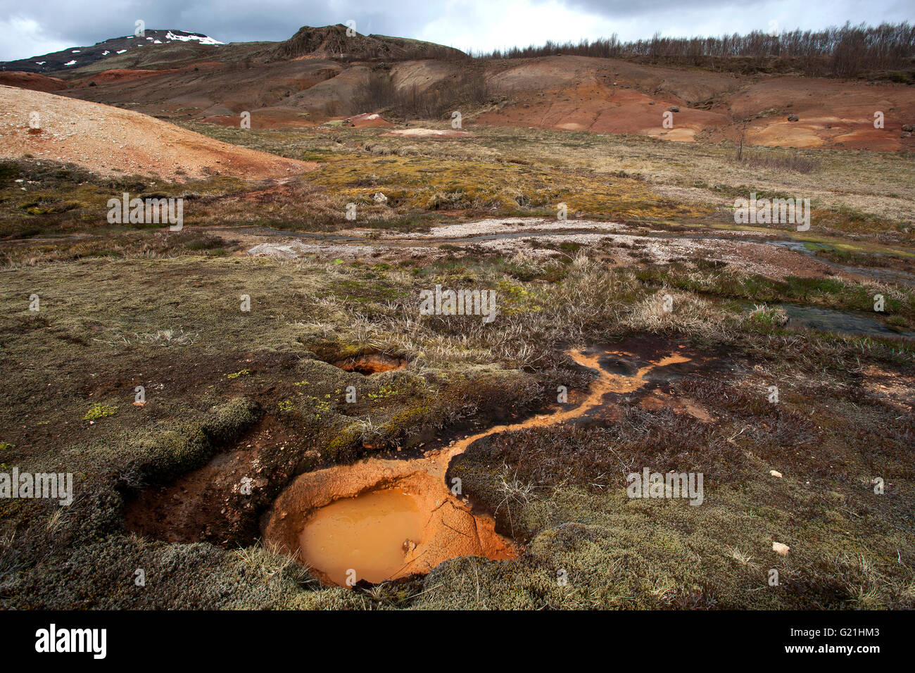 Landscape in the high temperature area Haukadalur Valley, tourist attractions, Golden Circle Route, Iceland Stock Photo