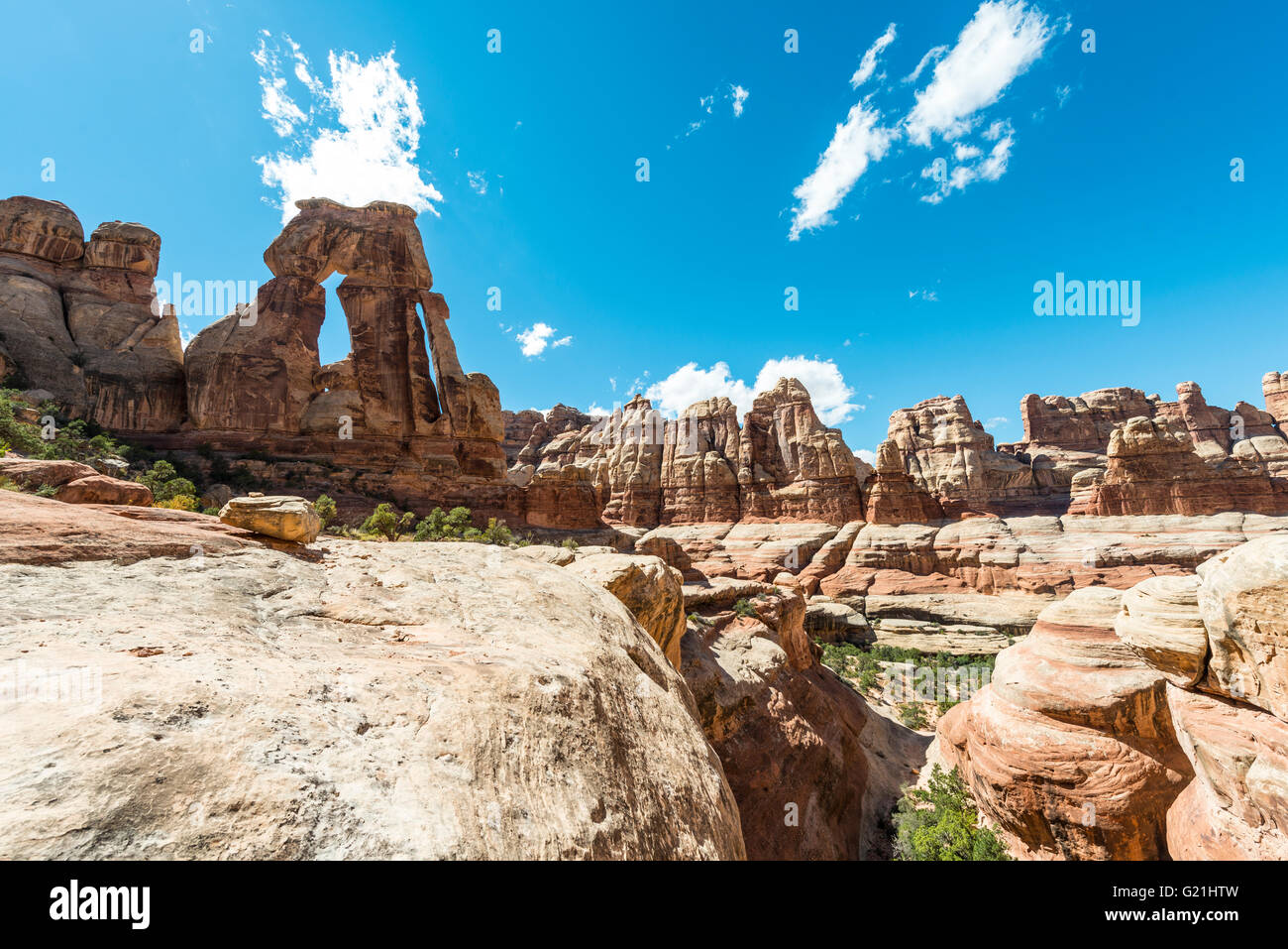 Druid Arch, Rock Formation, Stone Arch, Elephant Canyon, The Needles District, Canyonlands National Park, Utah, - Stock Image
