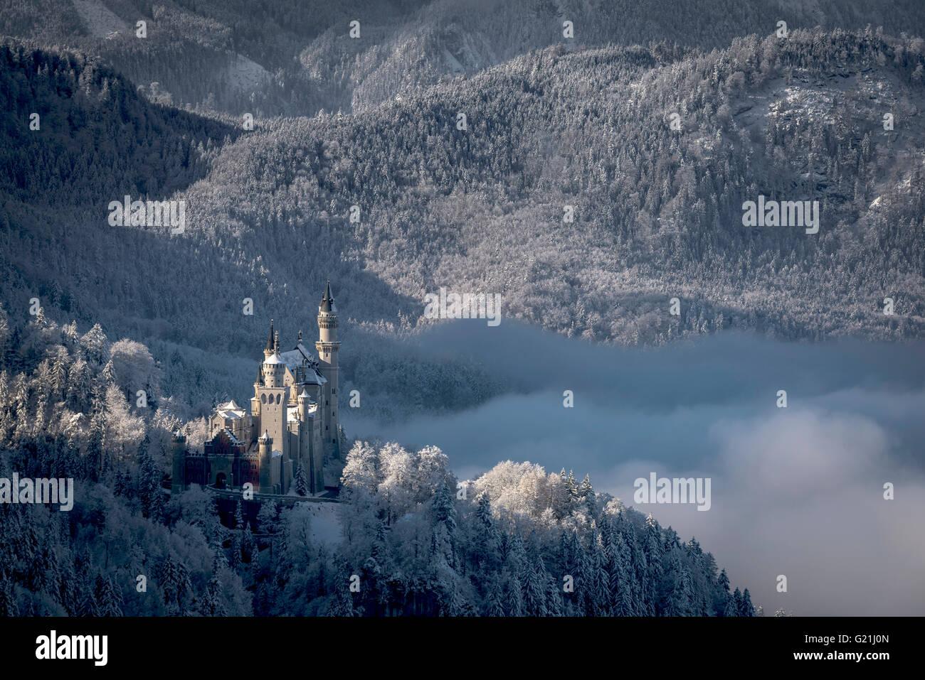 Neuschwanstein Castle with snowy mountains, Allgäu Alps, Fussen, Allgäu, Bavaria, Germany - Stock Image