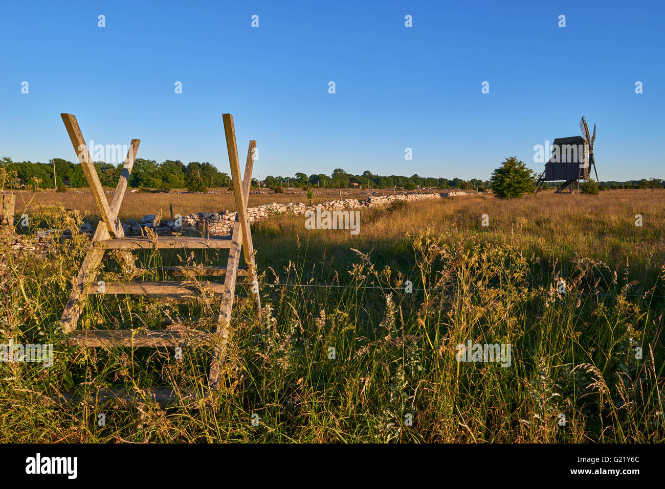 Alvar limestone moor with fence and old windmill in sunset at Isle if Oeland, province Kalmar, Sweden Stock Photo