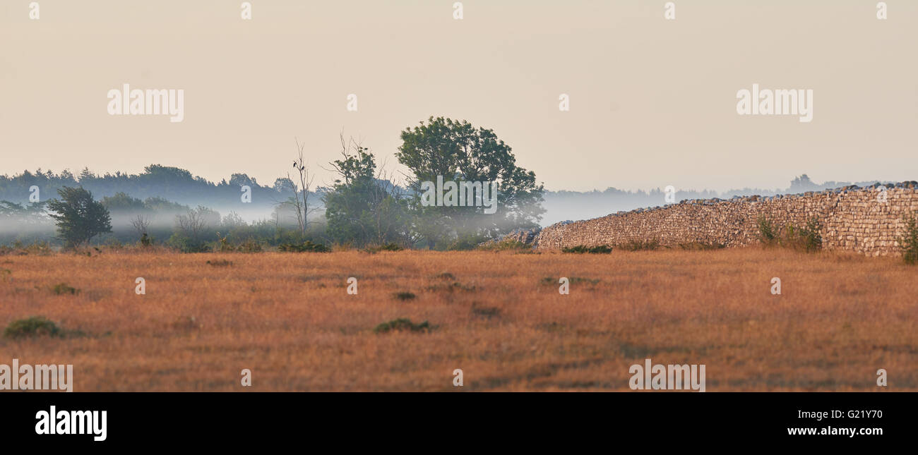 Stone wall KarlXgustavs Mur from 1865, early morning light, Isle if Oeland, province Kalmar, Sweden - Stock Image