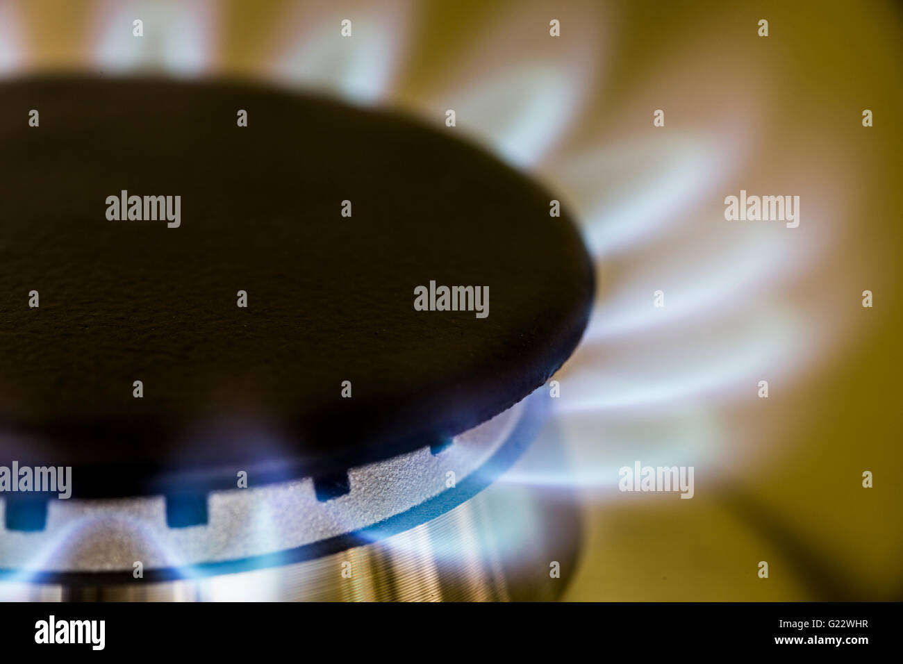 Fossil fuel close up of blue gas flame in home kitchen cooker - Stock Image
