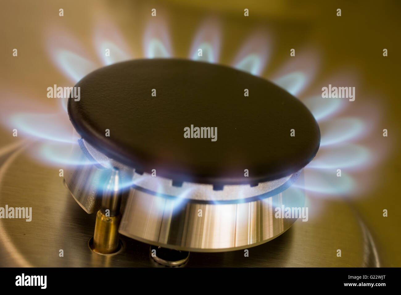 Close up of gas ring, blue flame on cooker - Stock Image