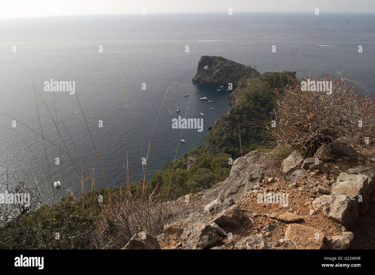 a beautiful picture of the coasts blue sea with rocks and vegetation in the foreground in Palma de Mallorca, Spain, - Stock Image