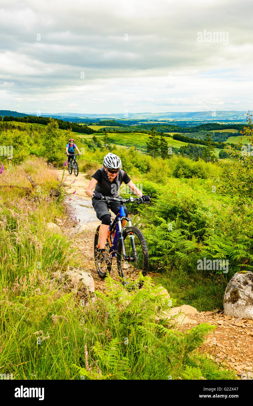 Mountain bikers at Comrie Croft trail centre near Crieff Perthshire - Stock Image