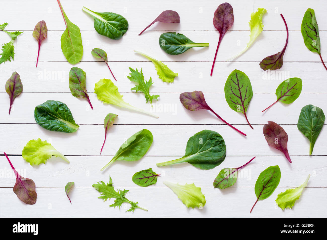 Pattern design of various salad leaves on white wooden background / Flat lay green salad leaves on white background - Stock Image