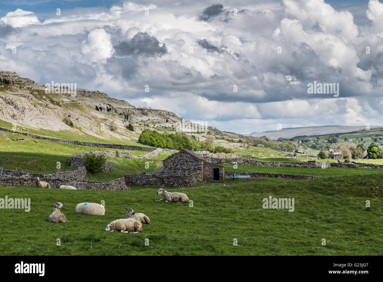 Moody clouds make way for the rocky hillside to be lit up by the spring sun - seen along the Ingleton waterfalls - Stock Image