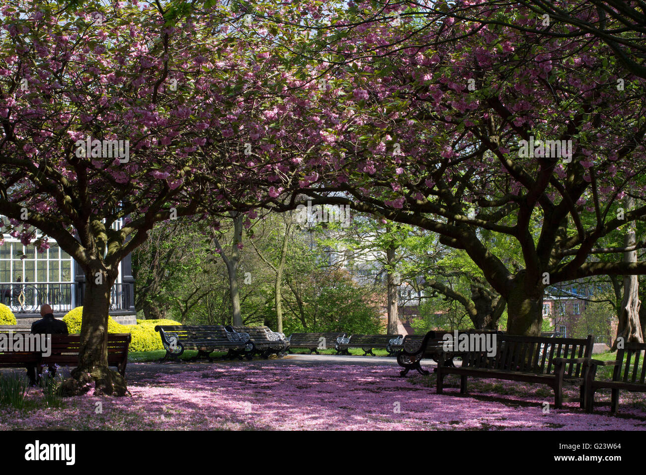 The gardens at Nottingham Castle in Nottingham. - Stock Image