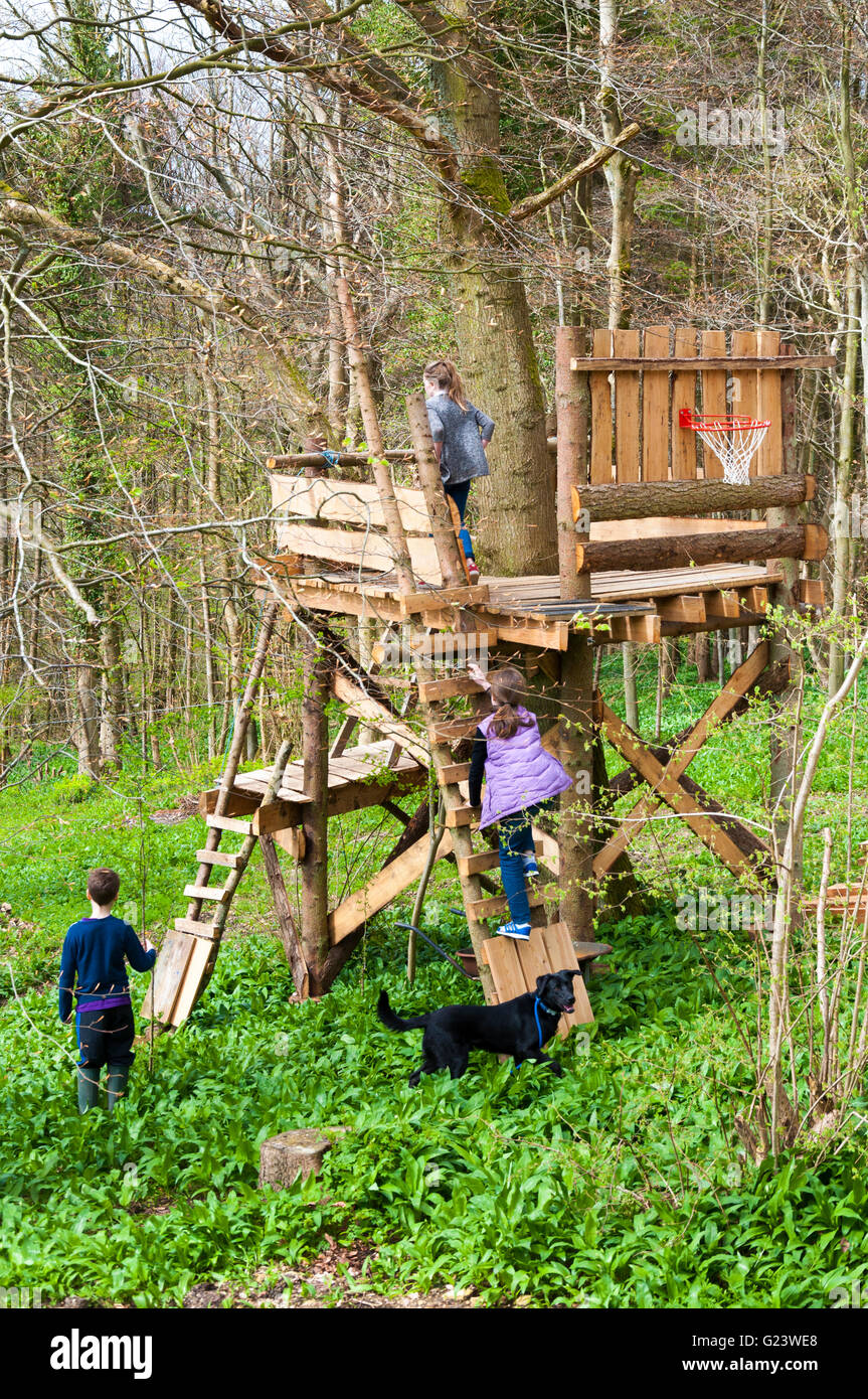 Picture of: Children And Dog Playing In Treehouse In Batheaston Somerset Stock Photo Alamy