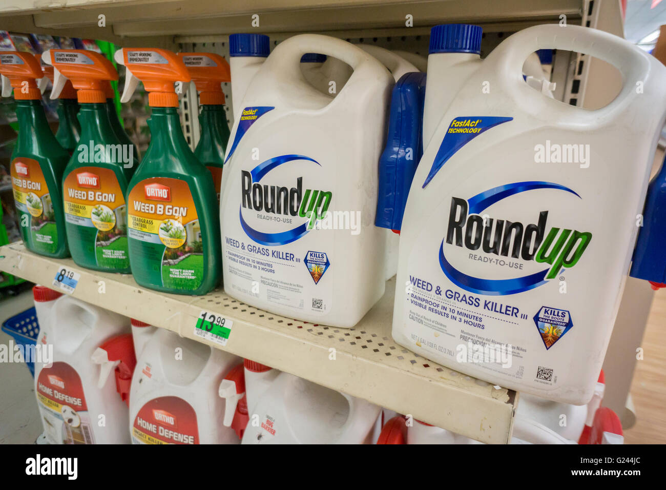 Containers Of Monsanto Roundup Weed Killer On A Garden Supply Store Shelf  In New York On Monday, May 23, 2016. Bayer AG, The German Pharmaceutical  And ...