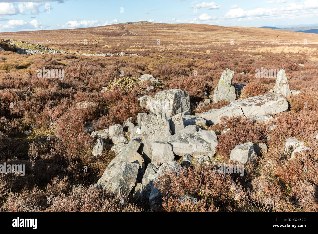 Millstone grit boulders on moorland, Blorenge, Wales, UK - Stock Image