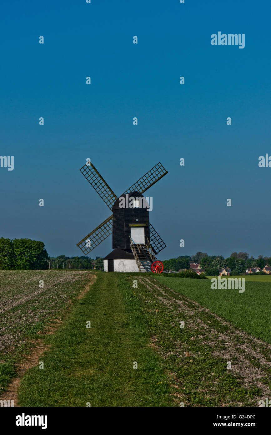 An early morning in May at Pitstone Windmill, Buckinghamshire, UK - Stock Image