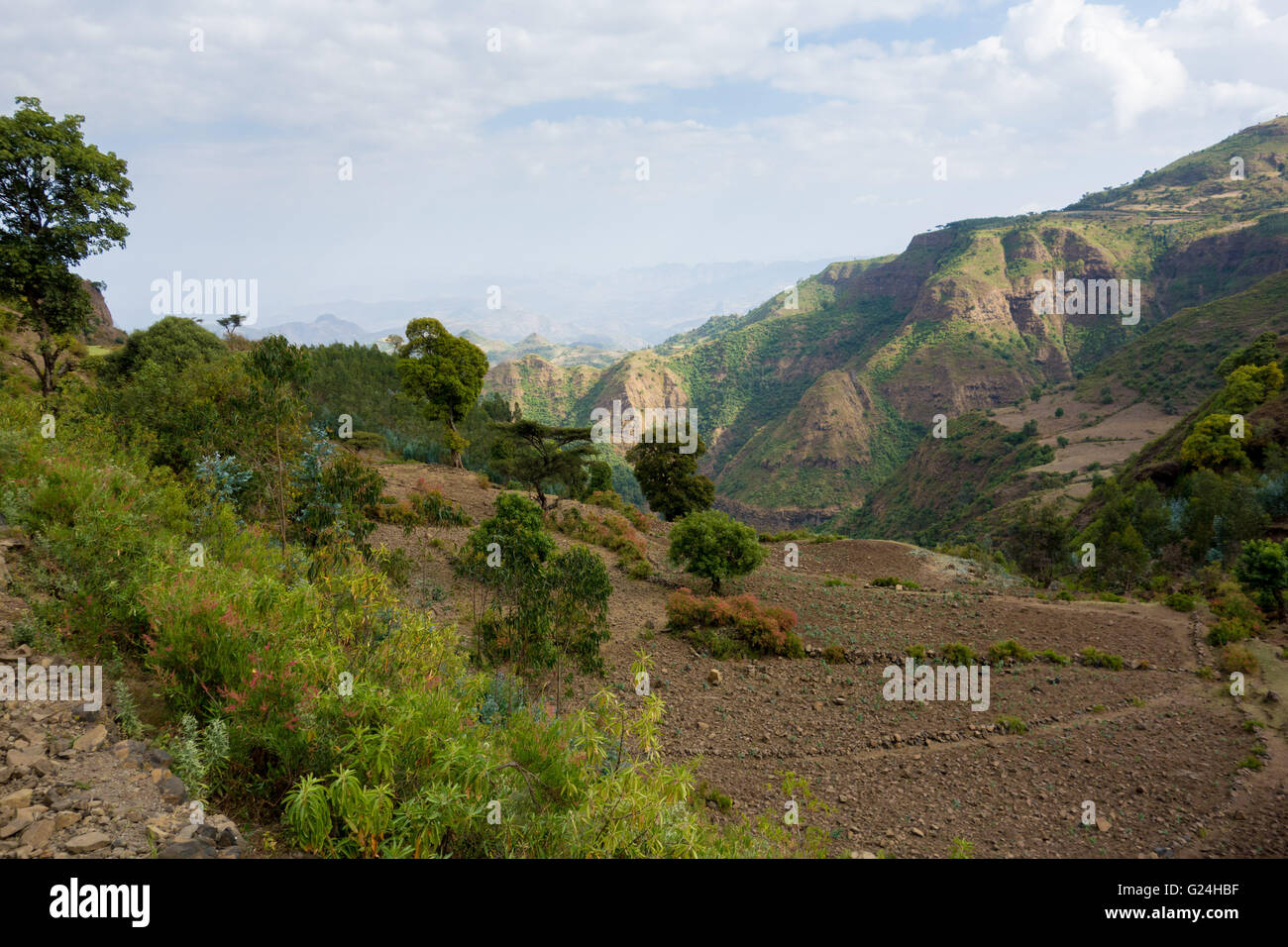 Overlooking a valley in the Simien Mountains National Park, Amhara Region, Ethiopia - Stock Image