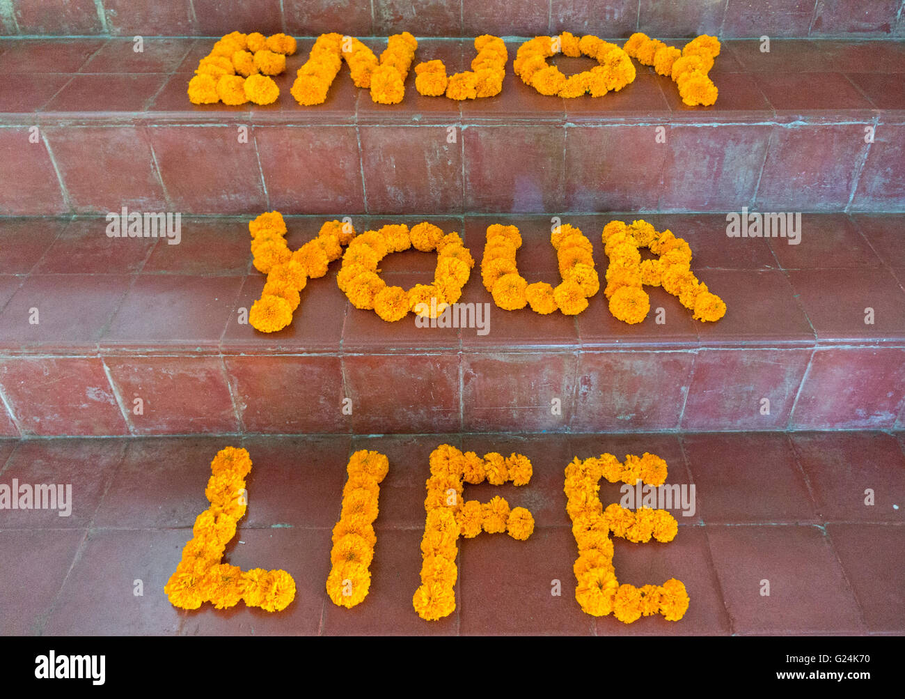 Flowers on stairs forming the words 'Enjoy your Life'. Motivational Quote - Stock Image