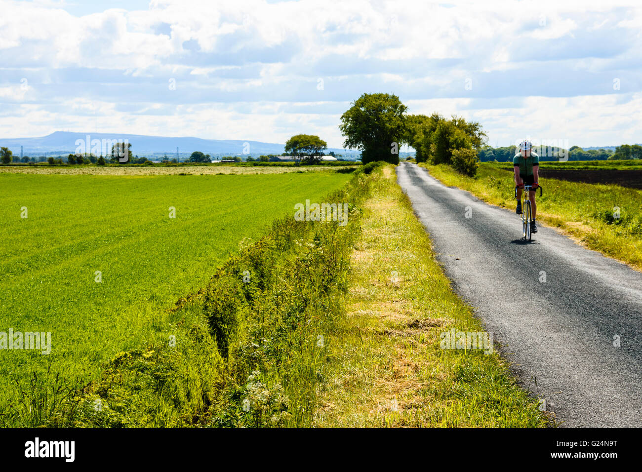 Cyclist on quiet lane between Mere Brow and Sollom in West Lancashire - Stock Image