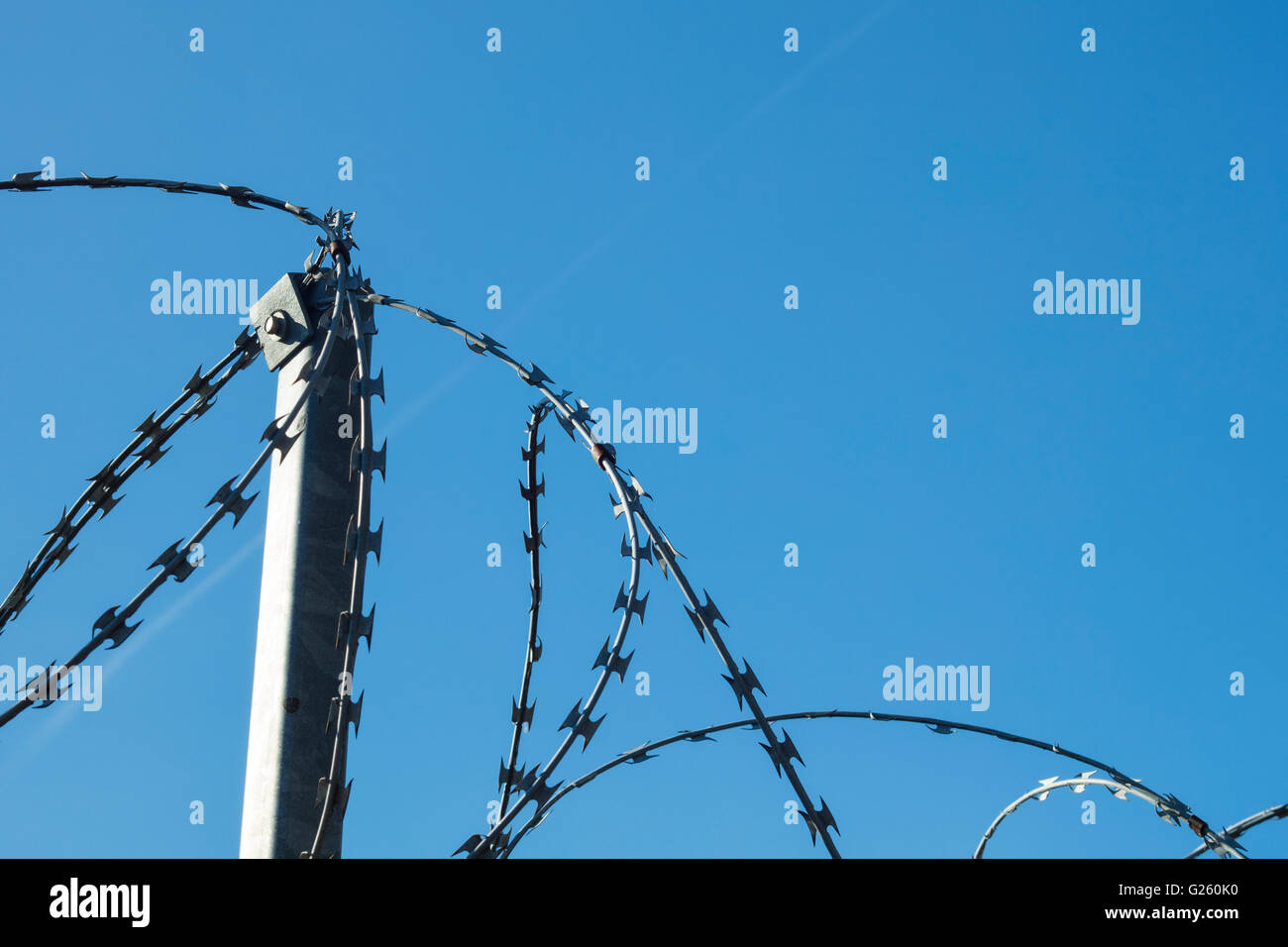 Detail of a barbed wire on a wall with blue sky at background - Stock Image