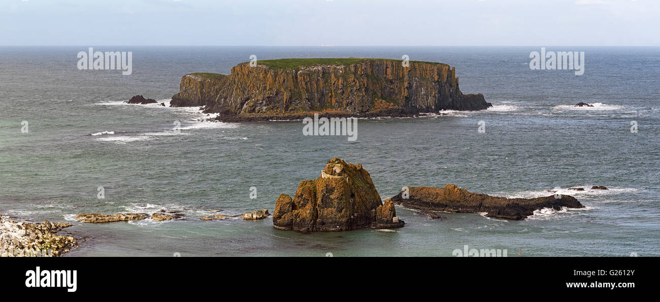 Larry Bane Head and Sheep island on the Ulster Way and Causeway Coastal Route County Antrim Northern Ireland - Stock Image