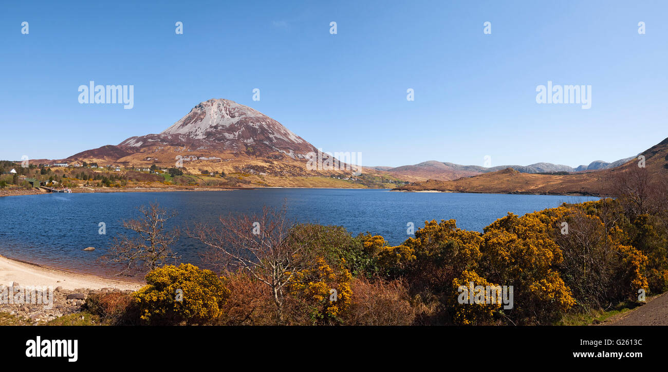 Mount Errigal and Dunlewy Lough in the Derryveagh mountain range Dunlewy County Donegal Ireland - Stock Image