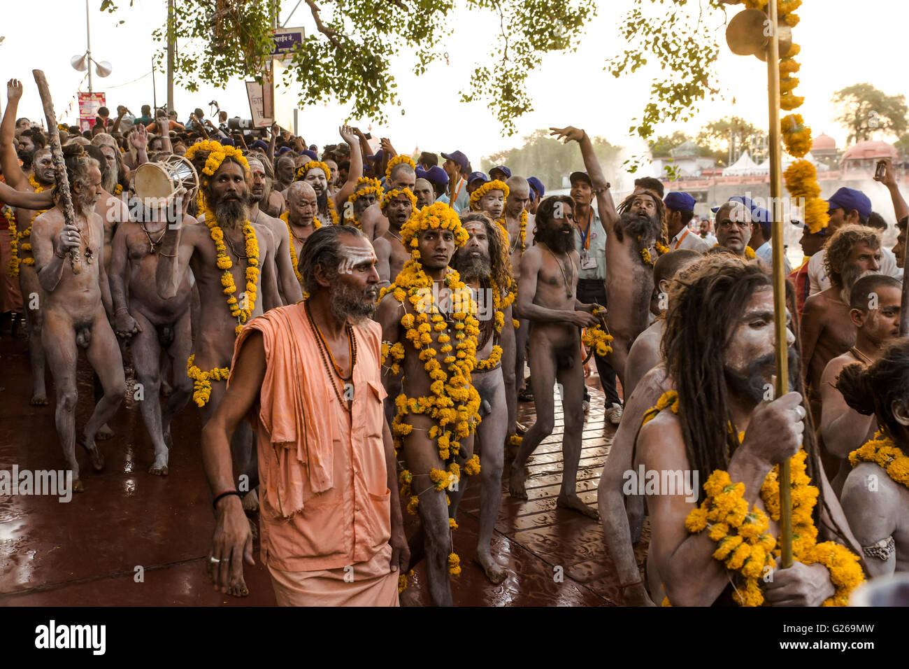 Ujjain, Madhya Pradesh, India, May 21, 2016: Holy Hindu Monks (Naga Sadhus) are going to take holy dip in the early - Stock Image