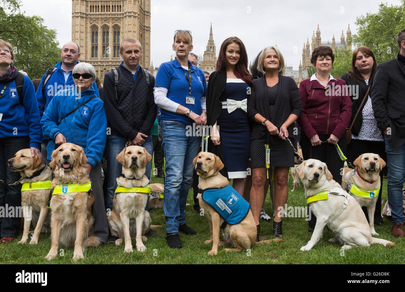 london uk 25 may 2016 100 guide dog owners with their guide dogs rh alamy com guide dog owner refuses guide dog owners forum