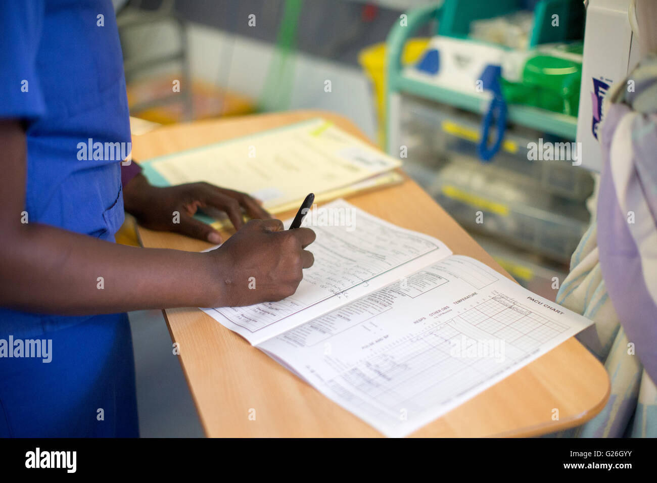 A nurse fills out patient notes in a hospital ward - Stock Image