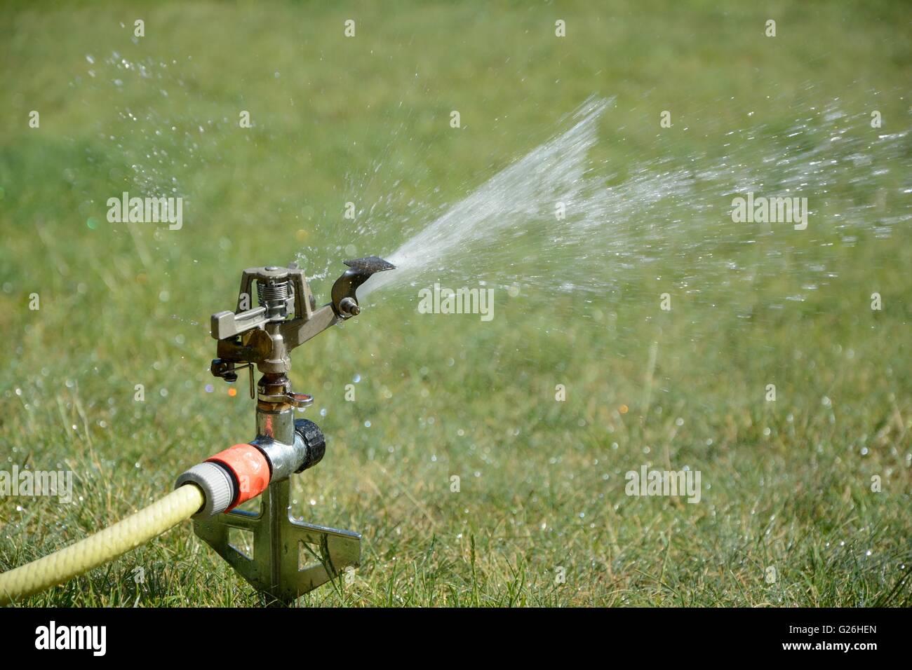 Sprinkler splashing with water on lawn in garden - Stock Image
