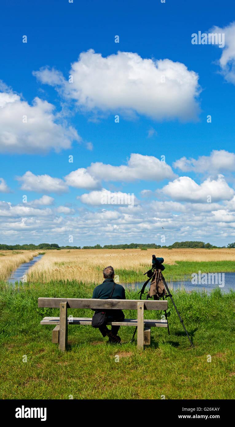 Lakenheath Fen, an RSPB nature reserve, near Lakenheath, Suffolk, England UK - Stock Image
