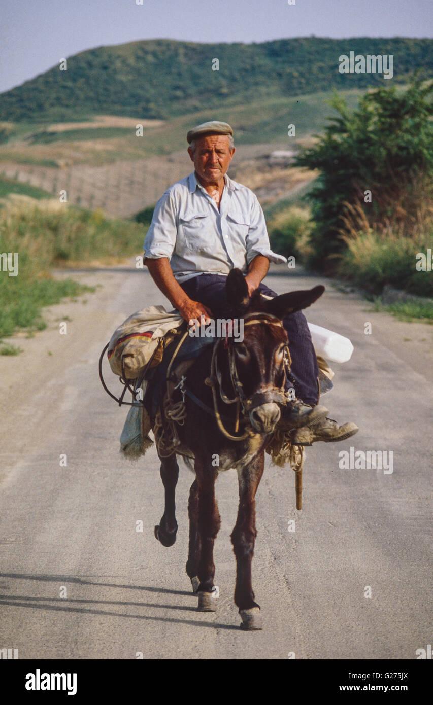 peasant on his mule near Cirò (Campania) - Stock Image