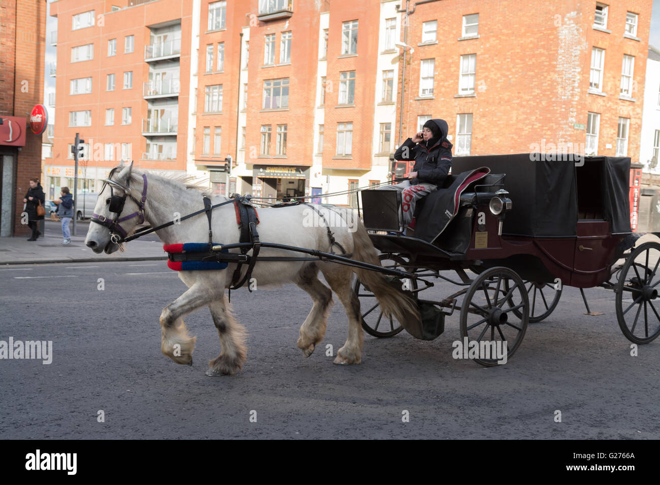 Youth driving a horse drawn carriage and using mobile phone in The Liberties area of Dublin at the junction of  - Stock Image