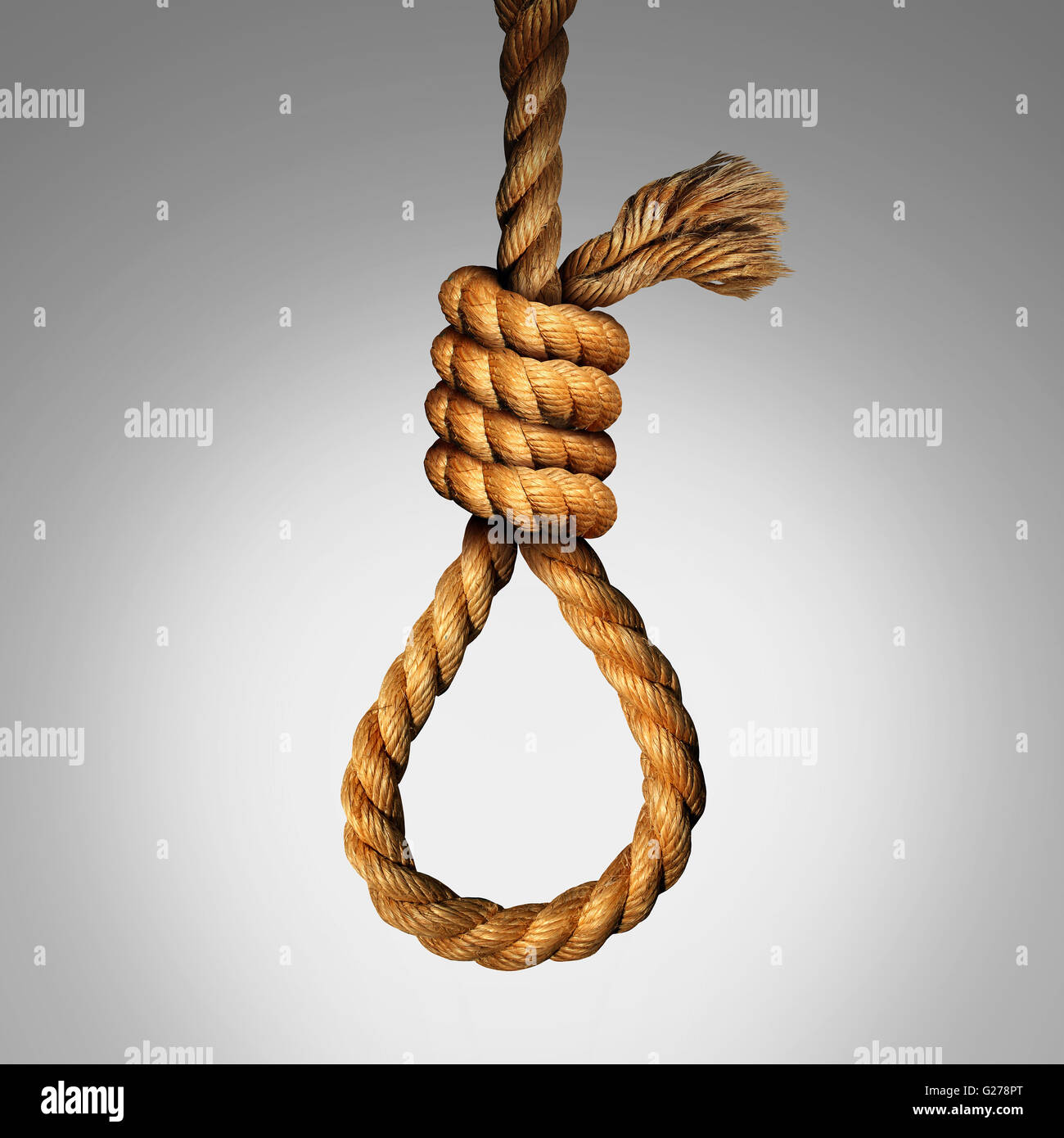 Suicide Noose concept as a rope in a lasso slipknot as a symbol for death or justice punishment or execution or - Stock Image