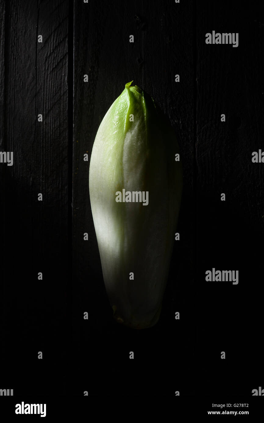 Belgian Endive on Black Wood - Stock Image