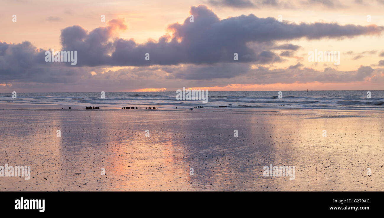 Evening light at the north sea coast of Norderney Stock Photo