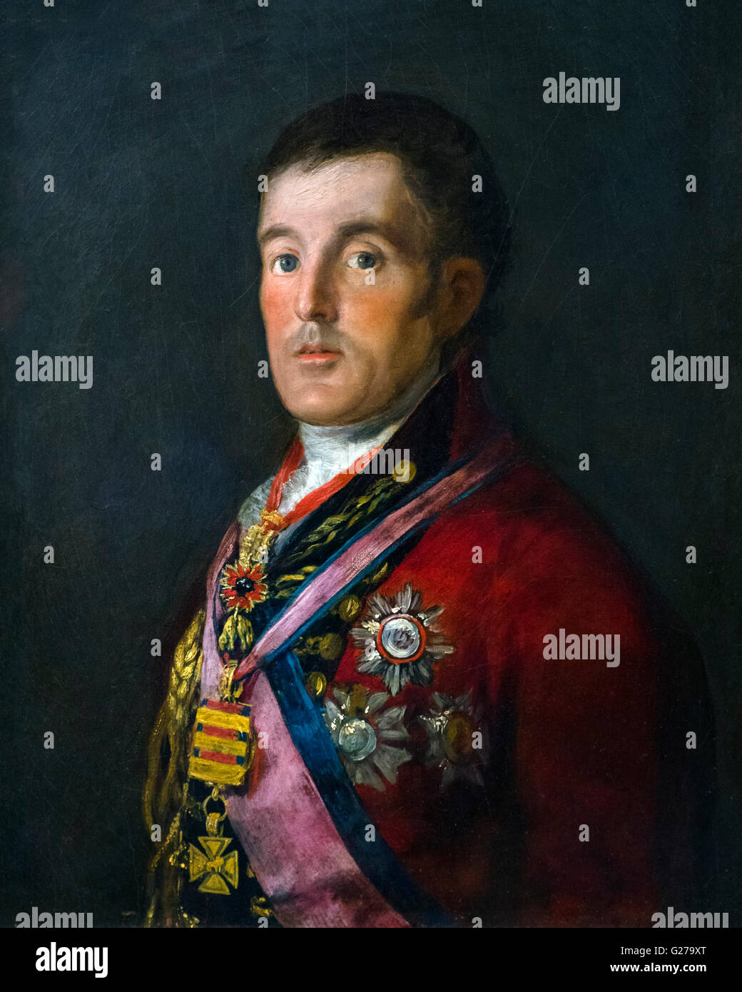 Duke of Wellington (1769-1852), portrait by Francisco de Goya, 1812-14. - Stock Image