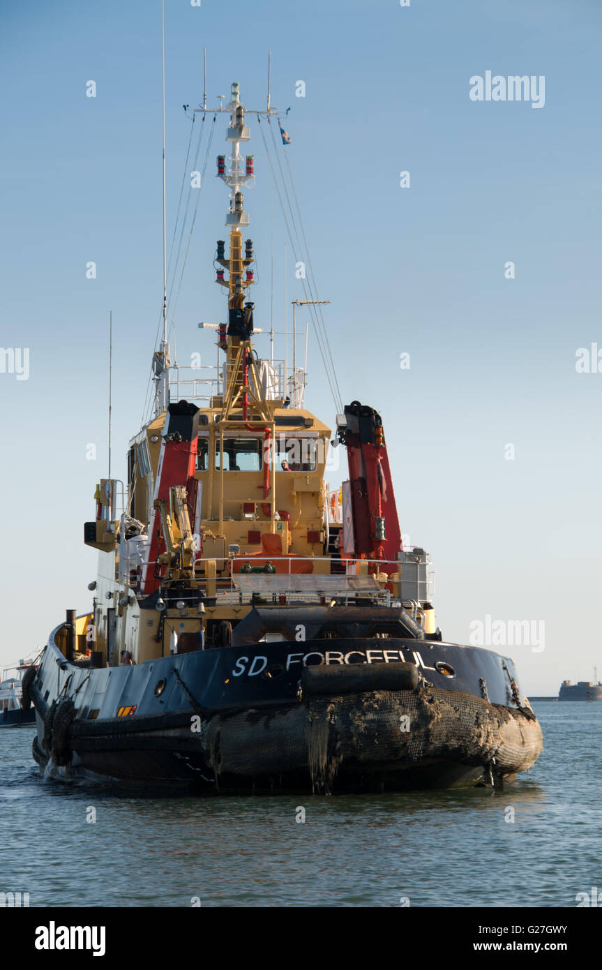 Tugboat SD Forceful in Plymouth Sound - Stock Image