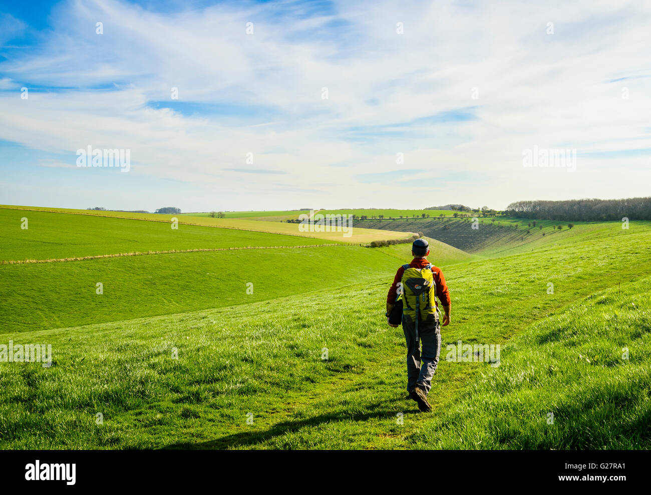 Walker on the Yorkshire Wolds Way National Trail above Deep Dale between Thixendale and Wharram Percy - Stock Image