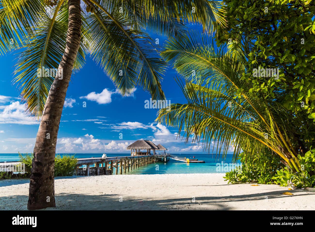 Beautiful tropical beach, Maldives - Stock Image