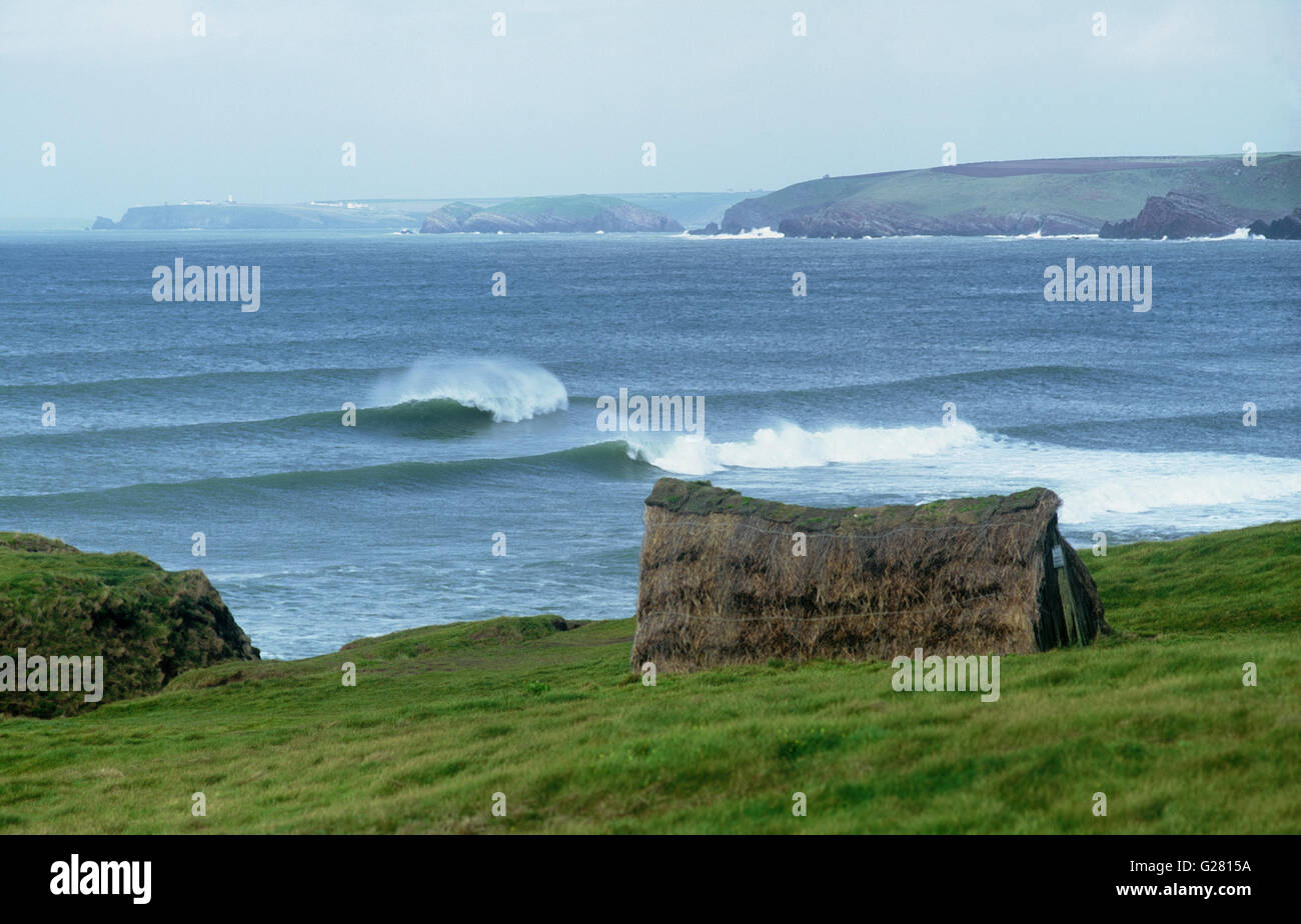 Laverbread hut  on green headland at Freshwater West  with  tubing Atlantic waves  and  St Anne's Head visible - Stock Image