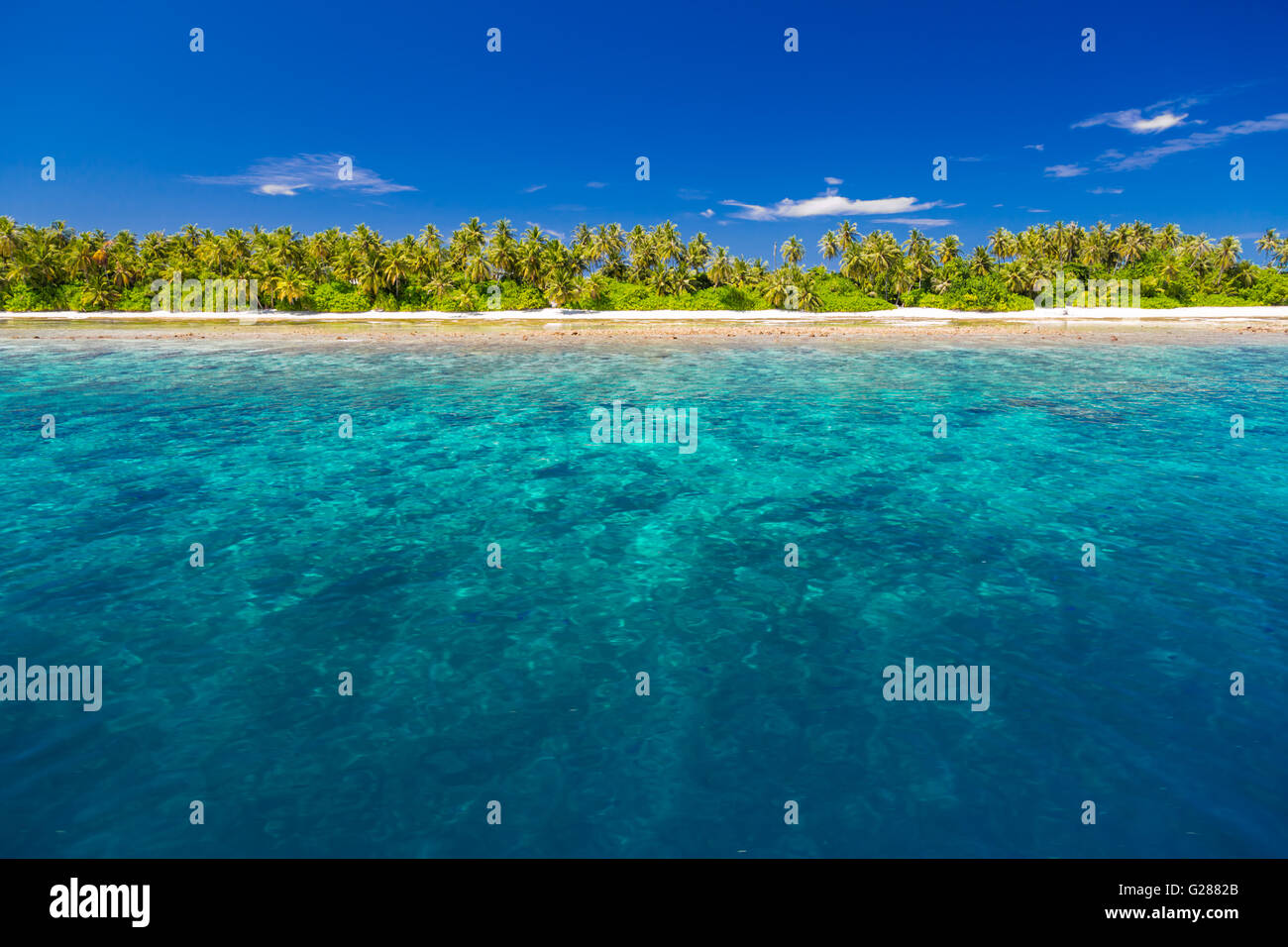 White tropical beach in Maldives with beautiful palm trees and blue lagoon. Background concept Stock Photo