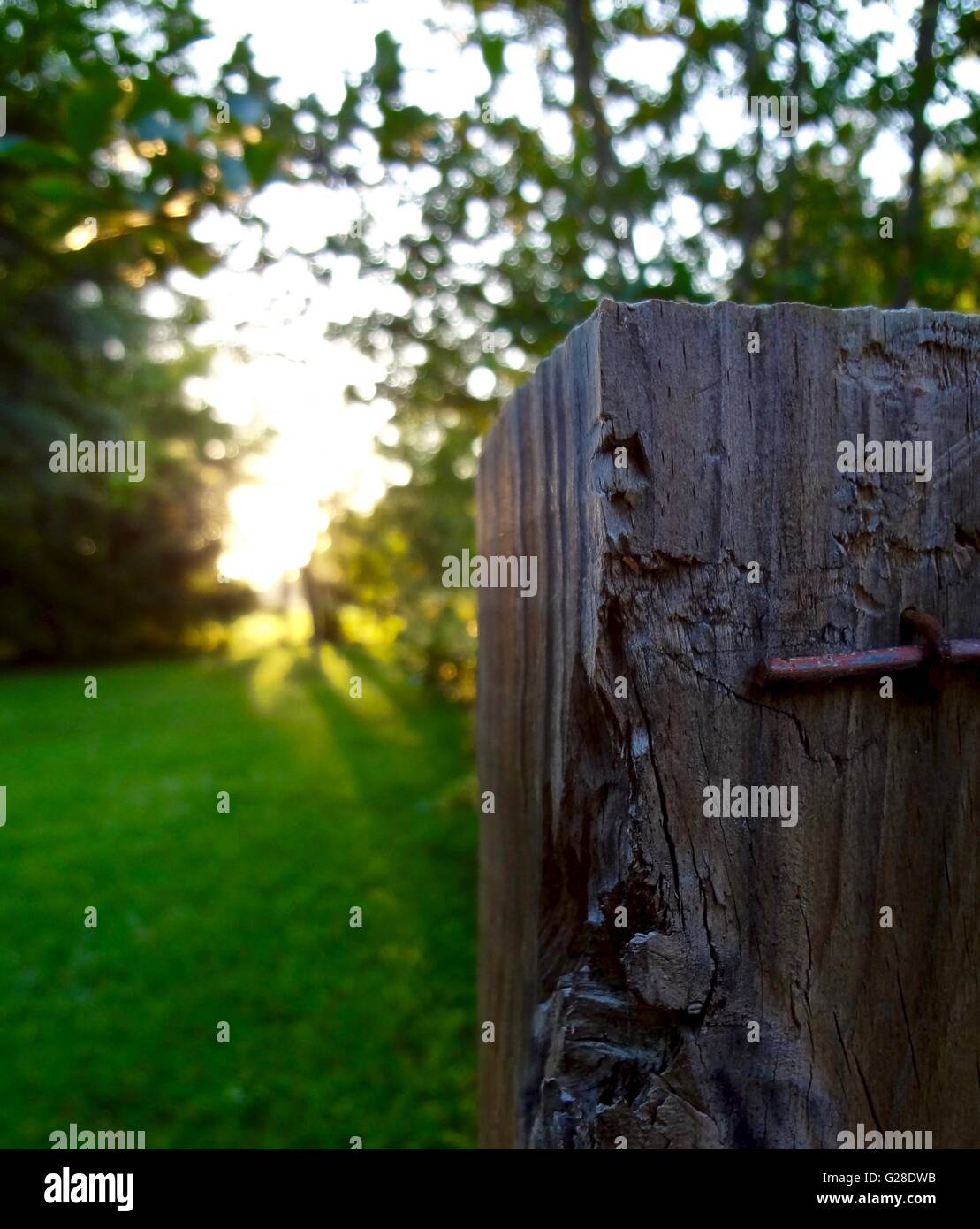 Close up of a fence post on a farm - Stock Image
