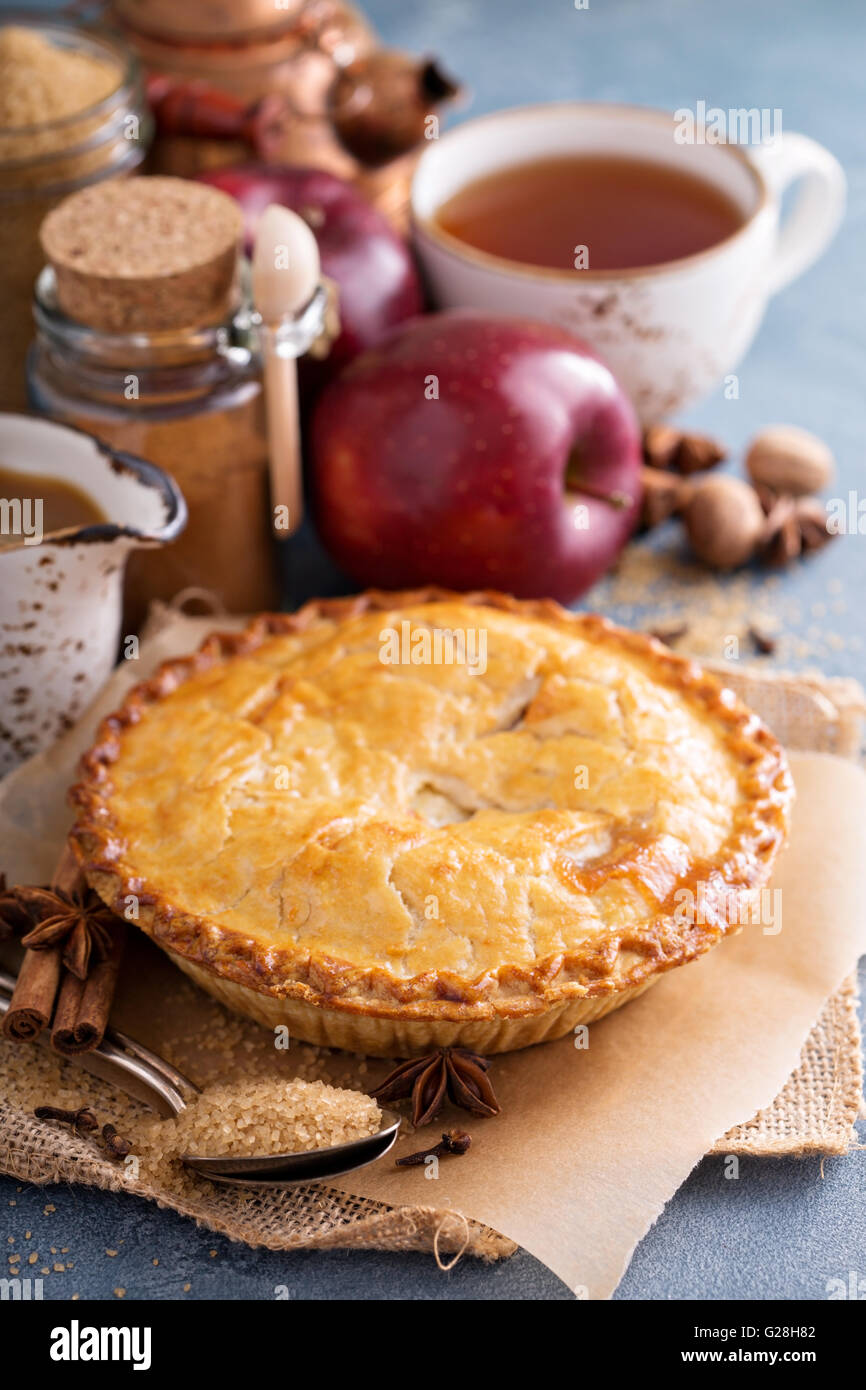 Apple pie with caramel syrup and cinnamon - Stock Image