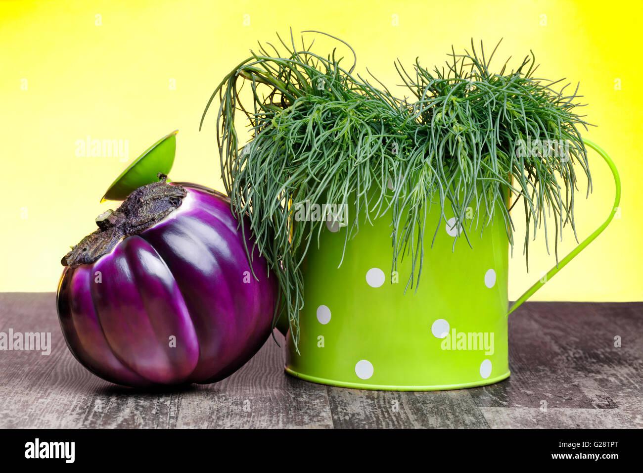 Antioxidant Succulent Vegetables - Stock Image