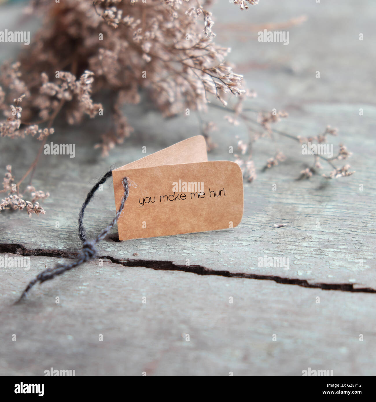 Sad Background In Love, With Message On Paper As: You Make Me Hurt, A  Lonesome And Despair Concept