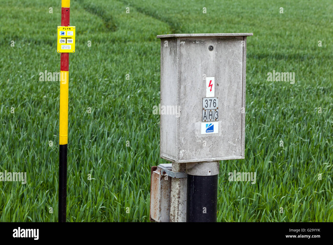 energy and gas distribution in a field with fresh spring grain - Stock Image