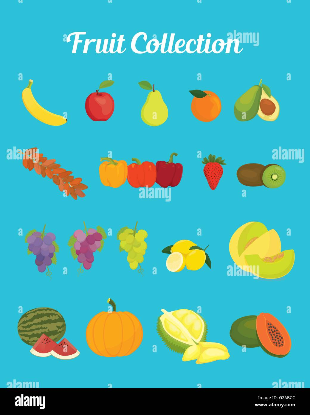 fruit collection images with bright color vector graphic - Stock Vector