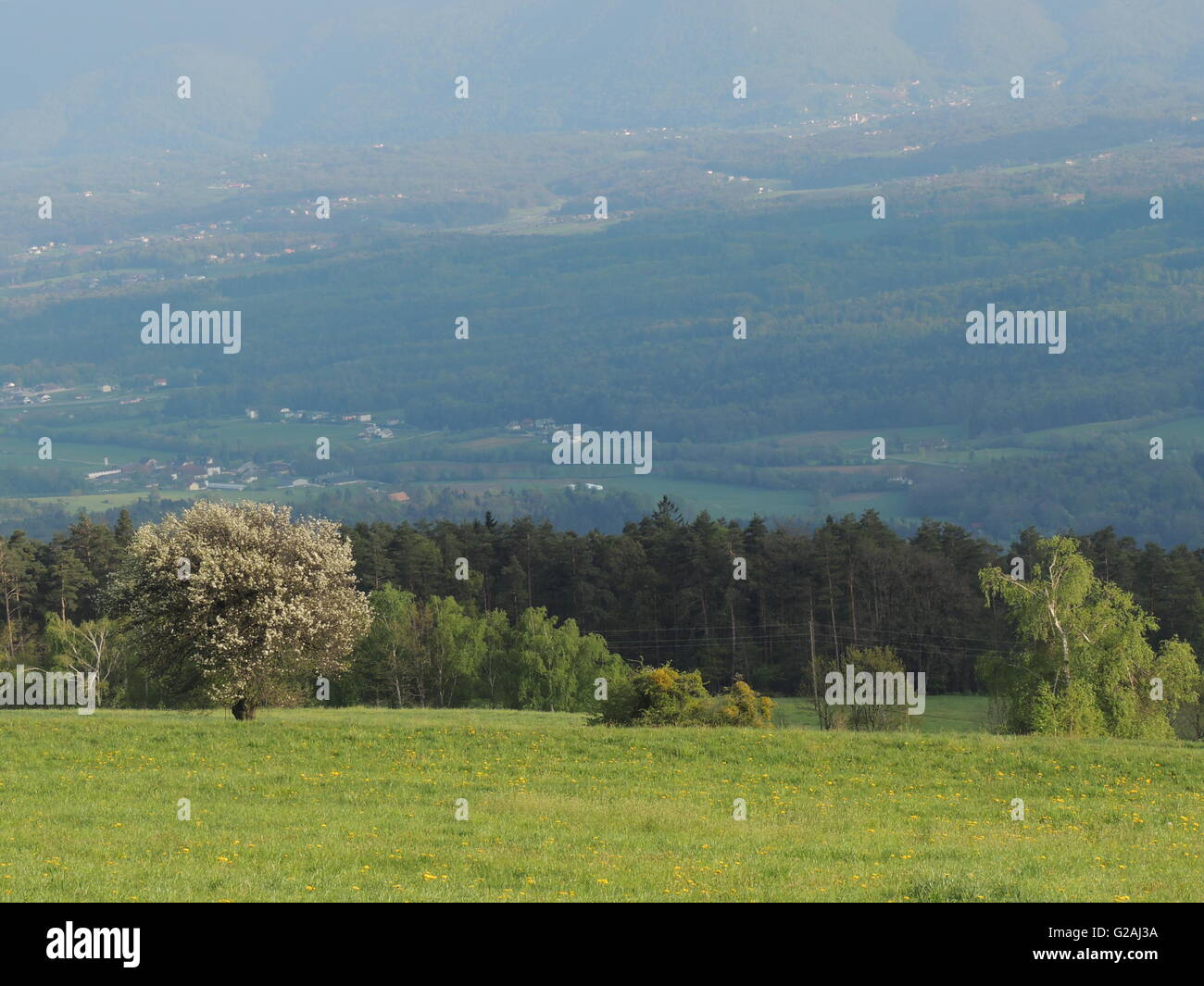 outlook near Slovenska Bistrica, Slovenia - Stock Image
