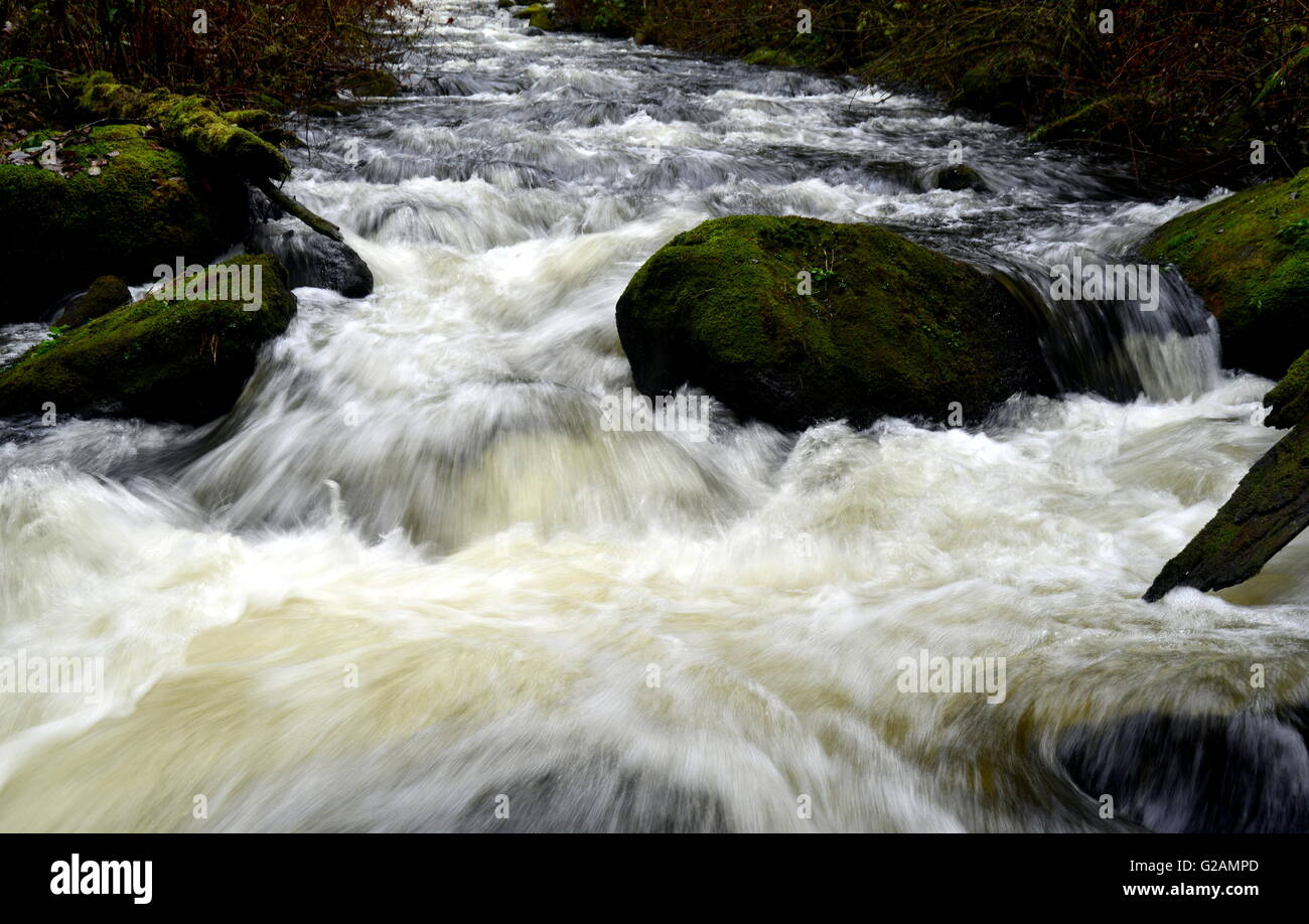 Waterflow in Steelhead Creek 4, Mission BC - Stock Image