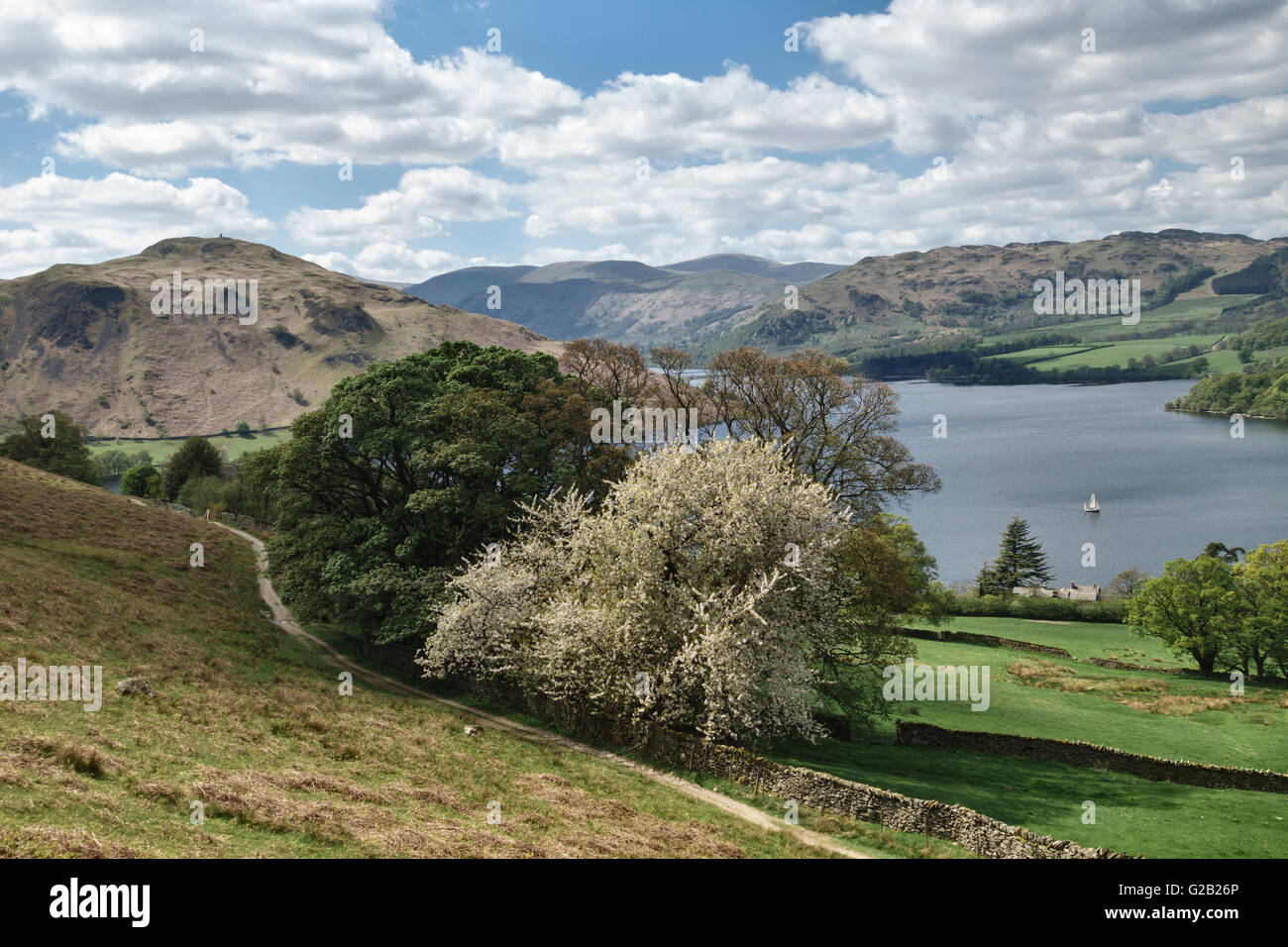 Ullswater (in the Lake District), Cumbria, UK. View over the lake towards Glenridding and Helvellyn in springtime Stock Photo